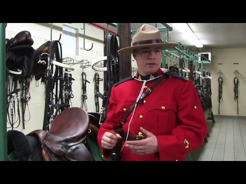 Why be a part of the RCMP's Musical Ride?