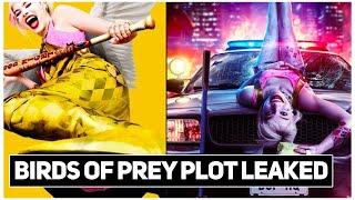BIRDS OF PREY Real Plot LEAKED | Breakdown in Urdu/Hindi