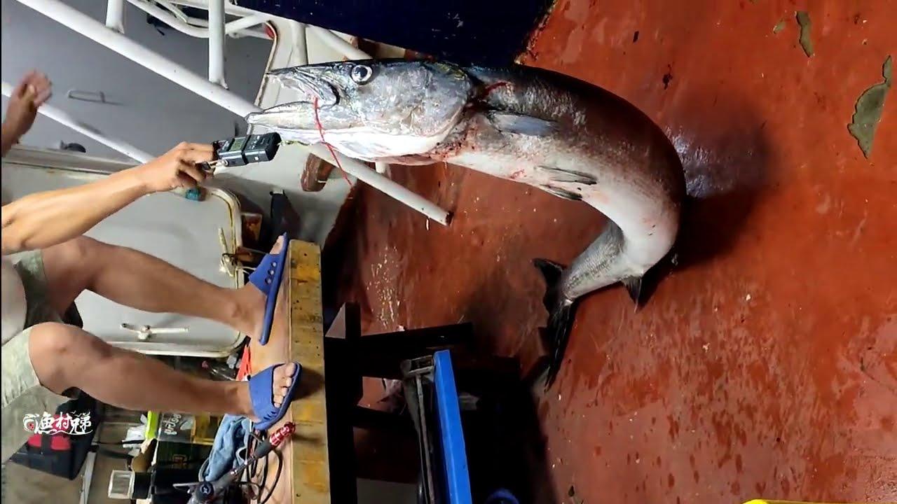 深海战狼钓鱼队第2集,又中条45斤大鱼,发财啦
