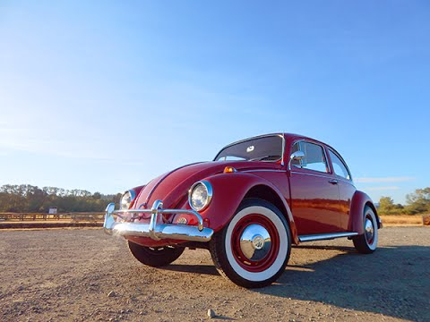 1967 VW Bug Birthday Present