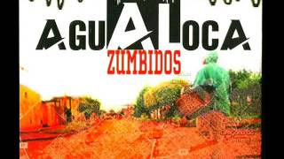 Brujulas-Agualoca YouTube Videos
