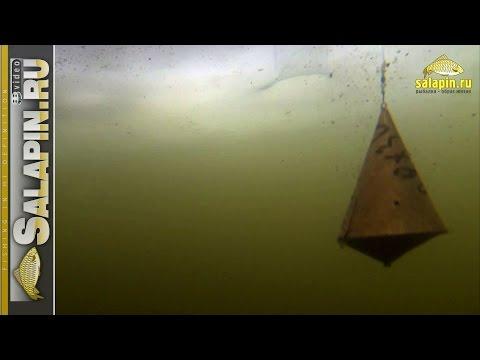 Реакция рыбы на докорм кормушкой и шарами (подводное видео, зимняя рыбалка) [salapinru]