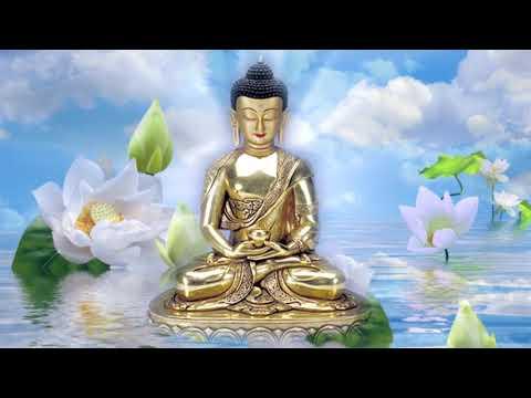 Учение о практике медитации.