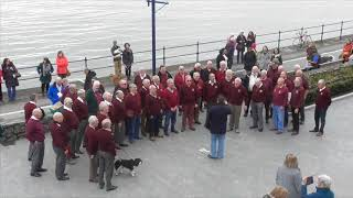 Video Dunvant Male Choir Flashmob 2018 download MP3, 3GP, MP4, WEBM, AVI, FLV Oktober 2018