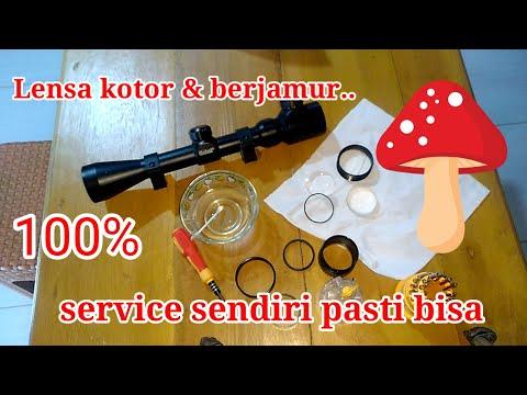 Cara bersihkan jamur