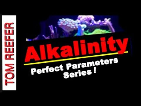 Nano Reef Tank PARAMETERS - ALKALINITY! - How To Raise And Lower