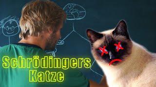 LekkerWissen - Schrödingers Katze und die Vielen Welten