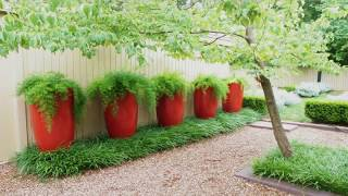 Gambar cover Landscaping Ideas For Front of House with small Budget -  Room design