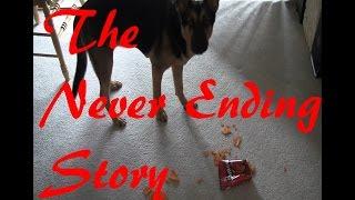 The Dog Owner's Never Ending Story