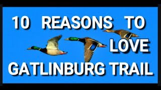 10 REASONS TO LOVE GATLINBURG TRAIL, Gatlinburg Tennessee 2020