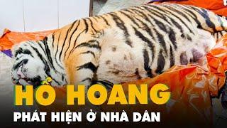 Mua hổ về giấu tại nhà, chưa kịp nấu cao thì bị công an phát hiện ở Hà Tĩnh