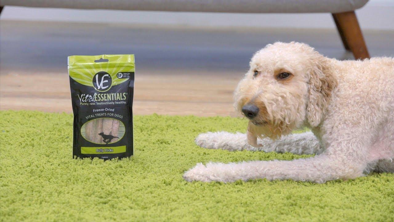 Vital Essentials Dog Food Dog Treats Chewy Youtube