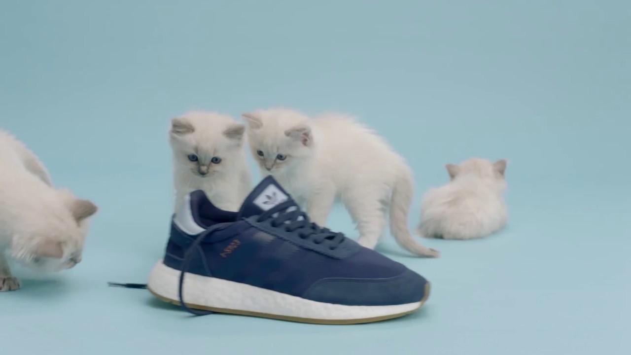 I Youtube For 5923 Exclusive Adidas Sneakersnstuff Pack Originals vCqwxg6