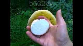 Настоящий белый гриб(Белый гриб размером с ладонь. 2013 год урожайный на грибы и в частности на белый гриб. Вот такой белый гриб..., 2014-02-20T07:23:10.000Z)