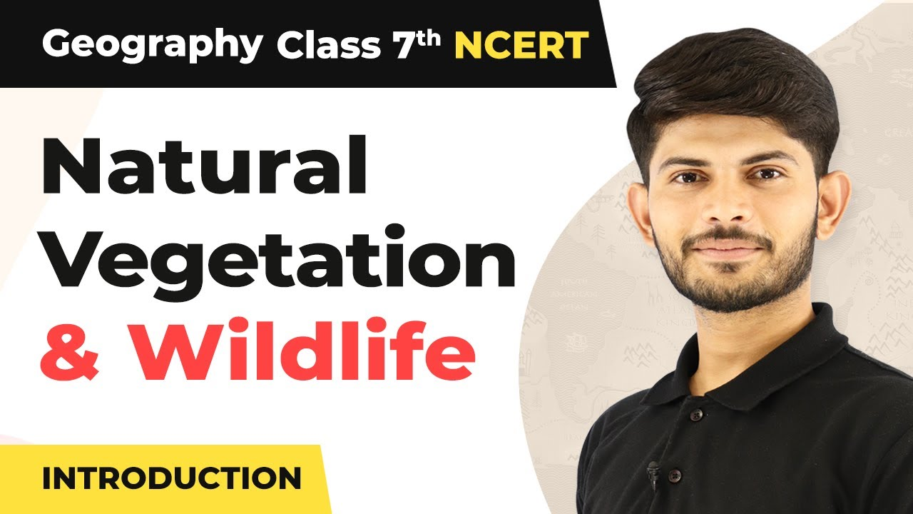 Natural Vegetation and Wildlife - Introduction   Class 7 Geography