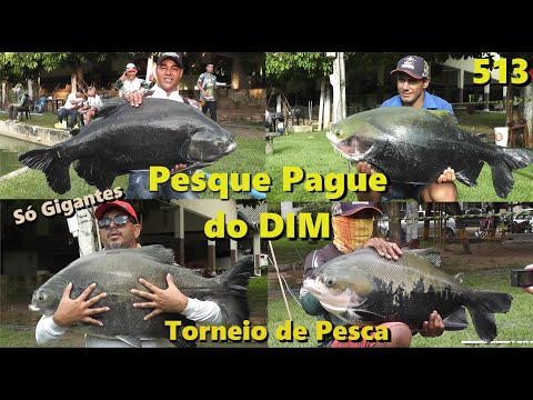 Pesque Pague do DIM - Torneio de Pesca - Fishingtur na TV 513