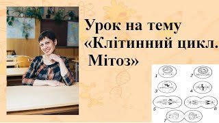 Уроки біології. ЗНО!!! Важливі теми. Мітоз. Клітинний цикл!