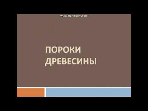 Видео урок пороки древесины