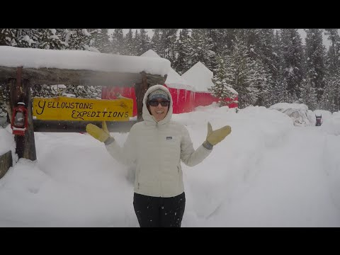 Ski and Snowshoe Fun in Yellowstone National Park at Yurt Camp