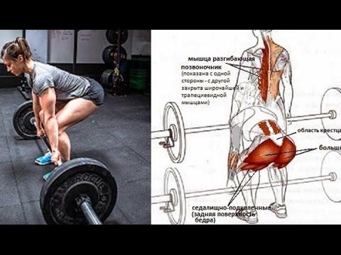 Можно ли превратить жир в мышцы