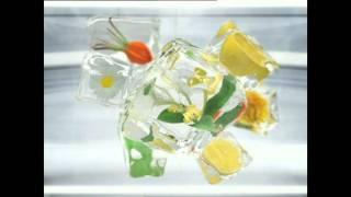 容祖兒 清熱酷 綠涼茶 草本檸檬 廣告