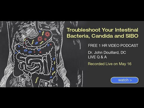 Troubleshoot Your Intestinal Bacteria, Candida and SIBO | John Douillard's LifeSpa