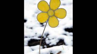 Mannick - Une fleur m'a dit (Haute Qualité).wmv