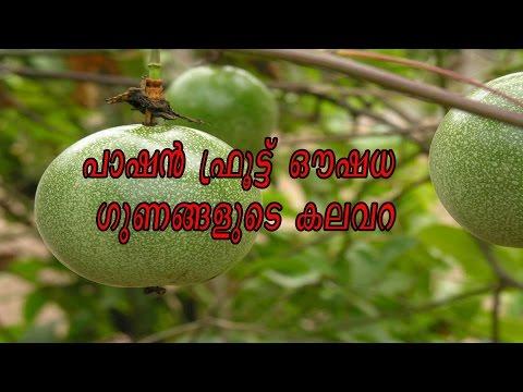 പാഷന് ഫ്രൂട്ട് ഔഷധ ഗുണങ്ങളുടെ കലവറ/Benifits of Passion fruit/Malayalam Health Tips
