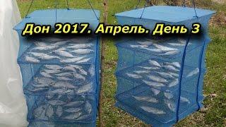 Дон 2017. Апрель. День 3