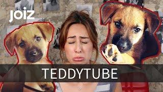 Welpe Teddy und Melissa sagen Tschüss! - TeddyTube Abschied