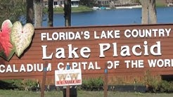 Our Day trip to Lake Placid Florida the home of the Caladium flower Full Time RV Living # 4