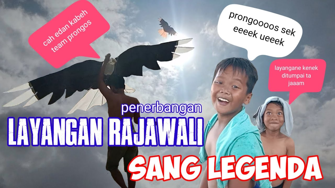 Layangan rajawali sang legenda Indonesia!!!duet maut dengan duo prongooos-auto hujan lebat...