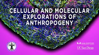 CARTA: Cellular and Molecular Explorations of Anthropogeny - Welcome and Introduction