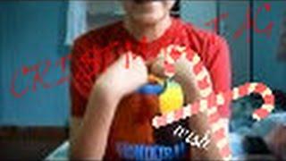 CHRISTMAS TAG ♥ Colaboración Thumbnail