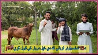 لوی اختر مو مبارک  عیدمبارک  Eid ul-Adha Mubarak-الحمدلله نن مو د قربانې غوښې په اړمندوکورنيو وويشلي