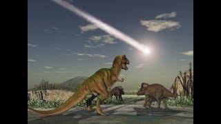 Evolution of Life After the Dinosaur Extinction