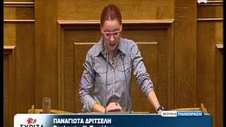 Ομιλία Π. Δριτσέλη στο πολυνομοσχέδιο Οργάνωση και λειτουργία ΕΟΠΠΕΠ, ΙΝΕΔΙΒΙΜ και άλλες διατάξεις