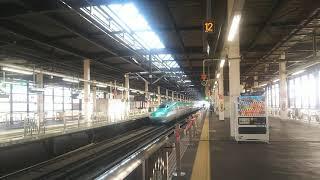東北新幹線 やまびこ43号 盛岡行き E6系とE5系  2020.02.15
