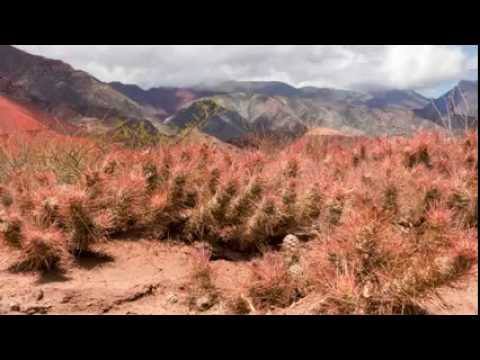Timelapse at Quebrada de Las Conchas Reserve, Salta, Argentina