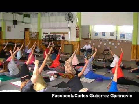 HANG .Carlos Gutierrez Gjurinovic ,Sonidos Sanadores
