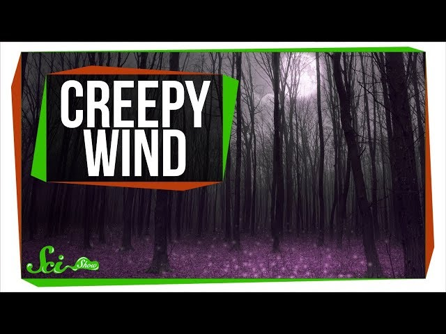 Why Does the Wind Howl So Creepily?