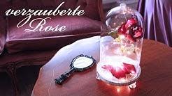 Verzauberte Rose DIY ~ Disney die Schöne und das Biest