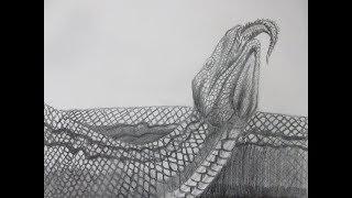 Speed Drawing the Prehistoric Snake Titanoboa - Danny the Dinosaur Drawer