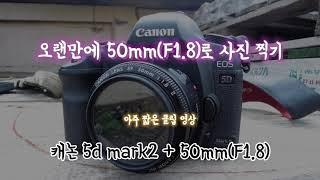B급 브이로그❗️[캐논 5d mark2 50mm F1.…