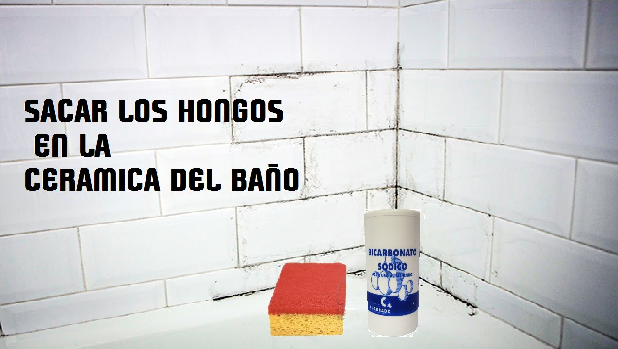 Como quitar manchas de moho de la pared simple como - Como quitar moho de la pared ...
