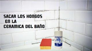COMO SACAR HONGOS DEL BAÃ'O -  MOHO