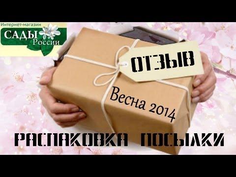 НПО САДЫ РОССИИ ОТЗЫВЫ + Распаковка посылки ВЕСНА 2014 роза Джон Дэвис