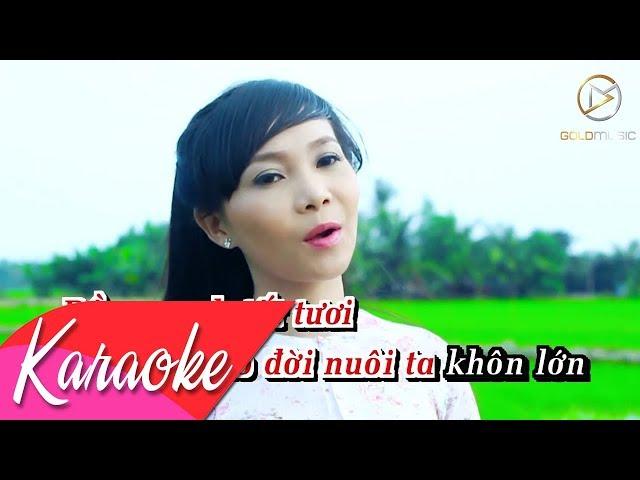KARAOKE   Miền Tây Quê Tôi - Ngọc Kiều Oanh   Beat Tone Nữ