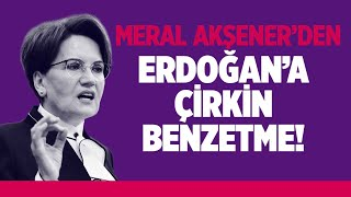 MERAL AKŞENER'DEN ERDOĞAN'A ÇİRKİN BENZETME!