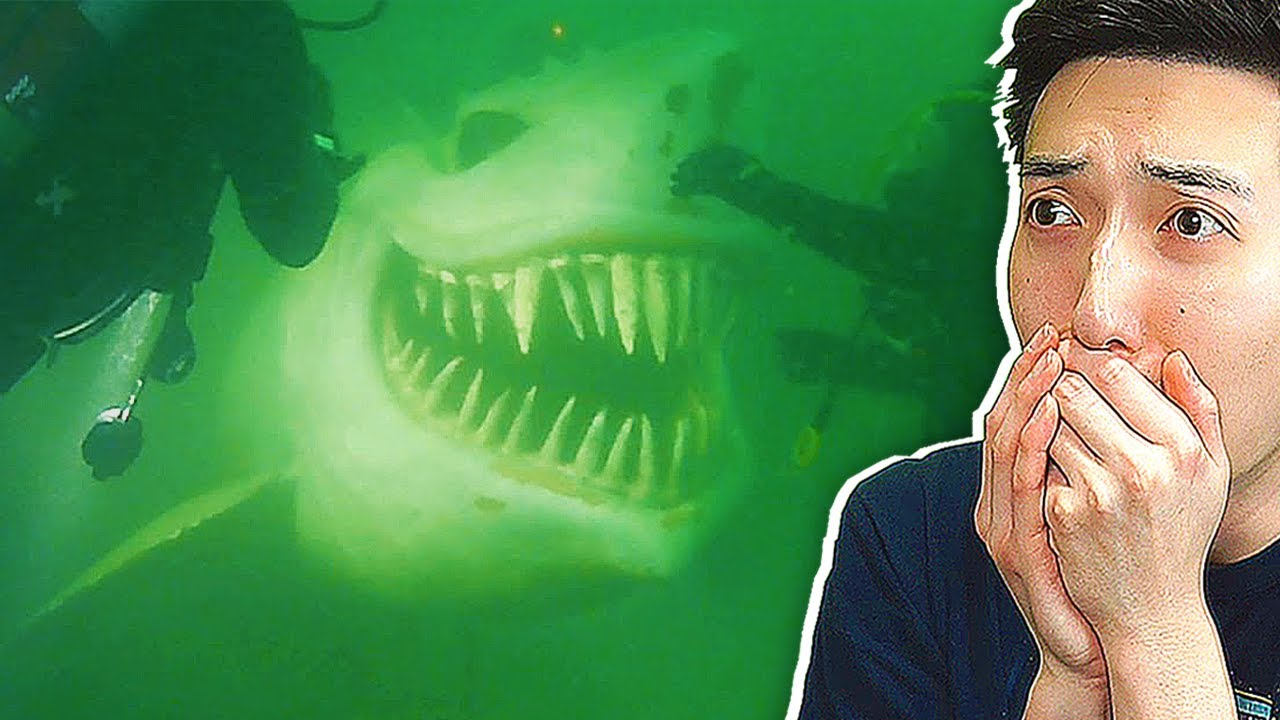 15 Most TERRIFYING Objects Found in The DEEP SEA !
